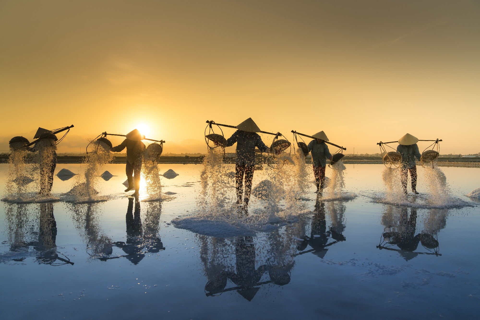 people in sea water harvesting salt